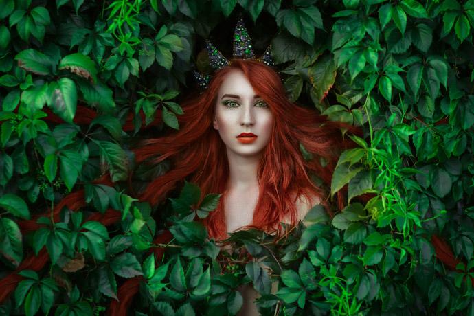 Princess Ivy's Quest